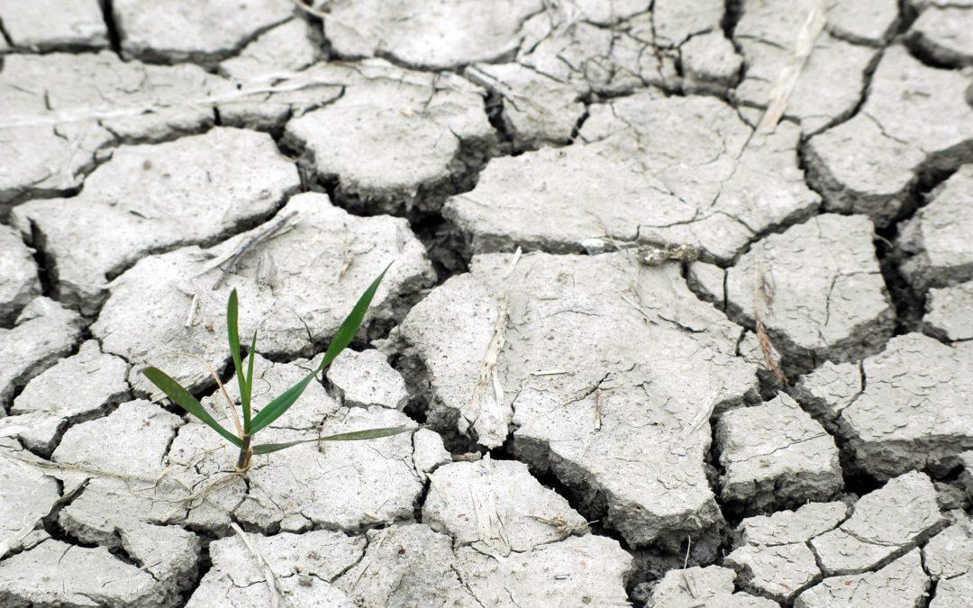 CAMBIO CLIMÁTICO Y DESPOBLACIÓN por D. Joaquín Manuel Rodríguez Chaparro