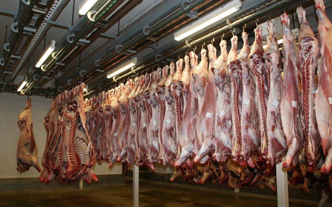 Las 'fake' de la ganadería: ¿comer carne… o no?